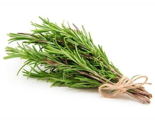 Treat Your Pain With Rosemary